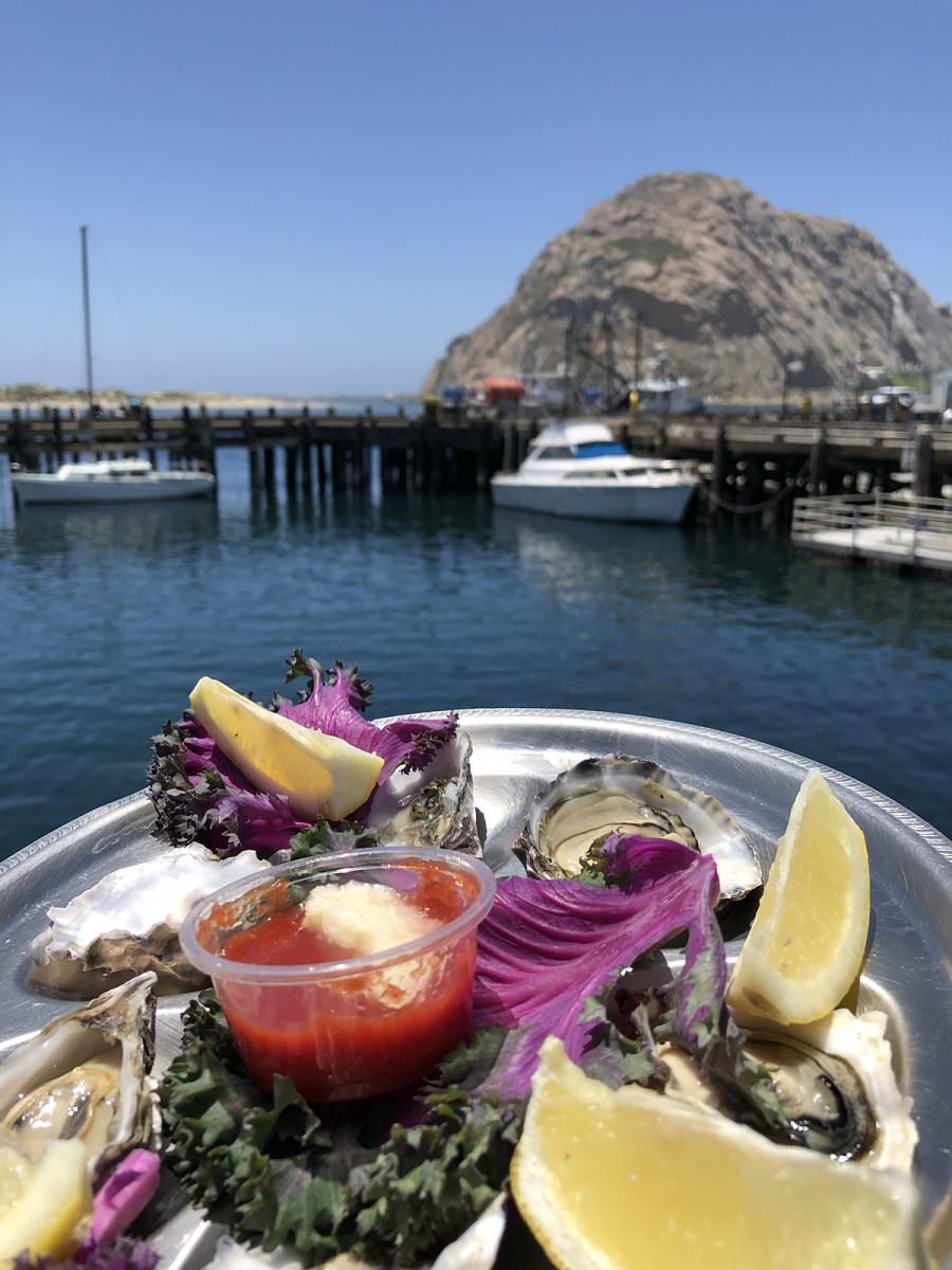 Tognazinnis Dockside and Morro Rock views
