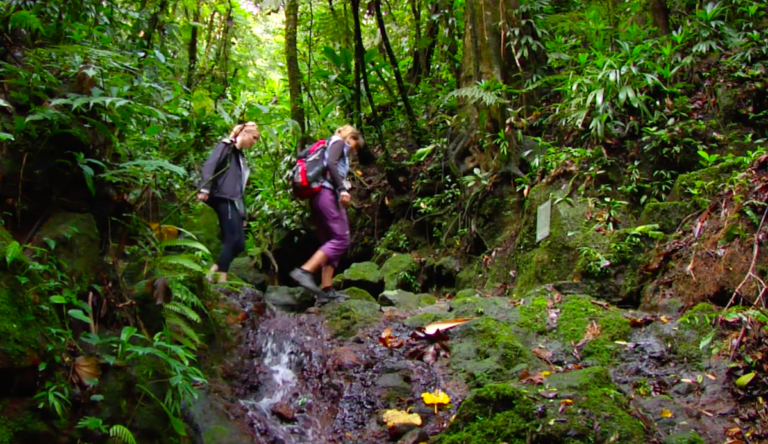 In the Guadeloupe Islands in the Caribbean, there's an active volcano that people can actually hike, and it's an experience that may wow you.