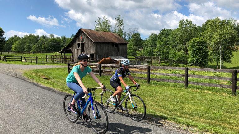 Darley Cycling Around Culpeper