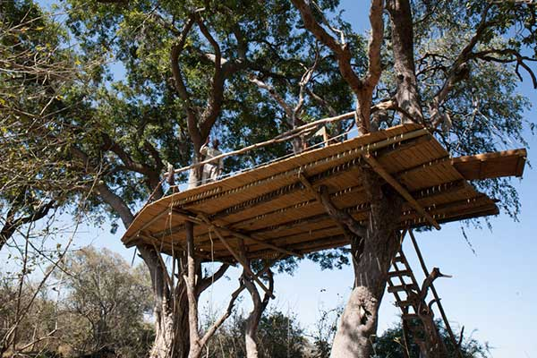 Botswana treehouse brunch Okavango Delta