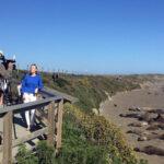 darley-elephant-seals-behind-scenes-6967923