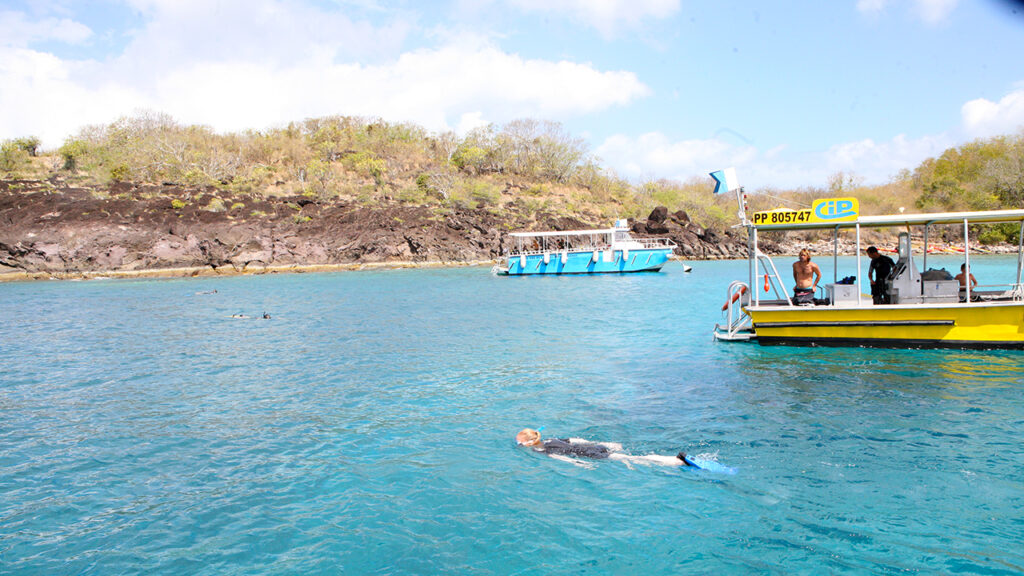 Snorkeling in the Jacques Cousteau Reserve