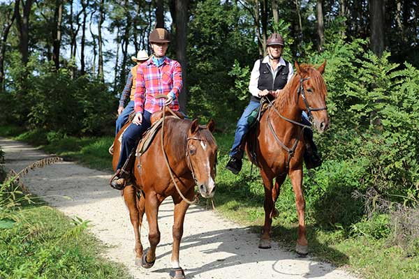 Go horseback riding at Midewin National Tallgrass Prairie to see how tall that prairie grass really reaches!