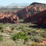 snow-canyon-state-park1-1024x683