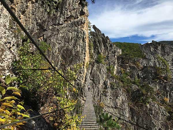 The suspension bridge looks like it came out of Indiana Jones. Darley walks across at N Rocks in WV.