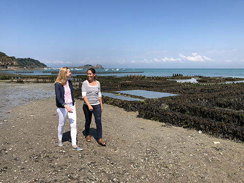 Darley discover Cancale's oyster beds