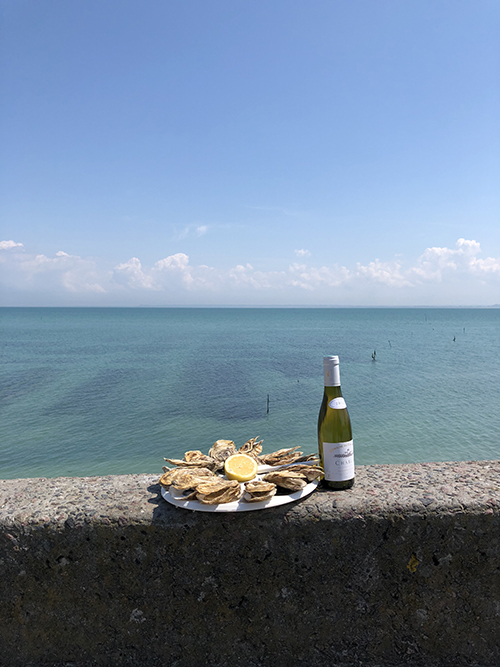 Oysters and wine in Cancale France