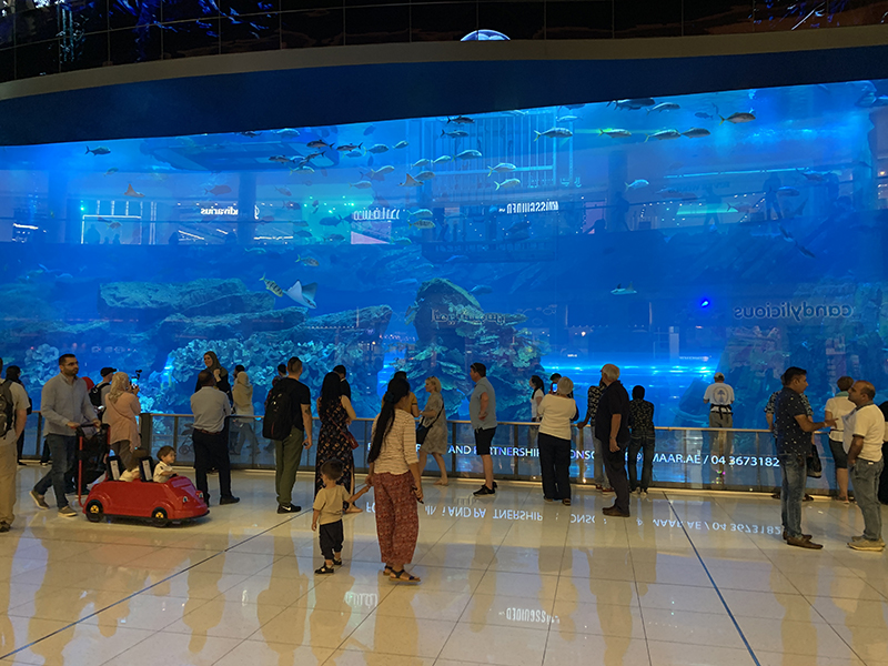 The Dubai Aquarium in the Dubai Mall