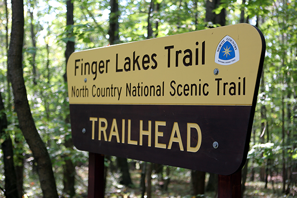 The Finger Lakes Trail in the Finger Lakes National Forest