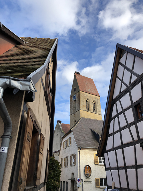 A storks nest in Eguisheim in France