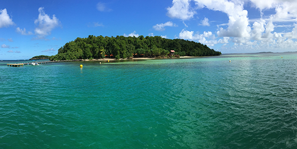 Beautiful waters for snorkeling in Martinique