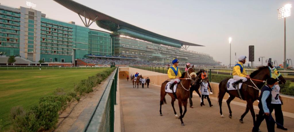Meyde Stables tour Dubai