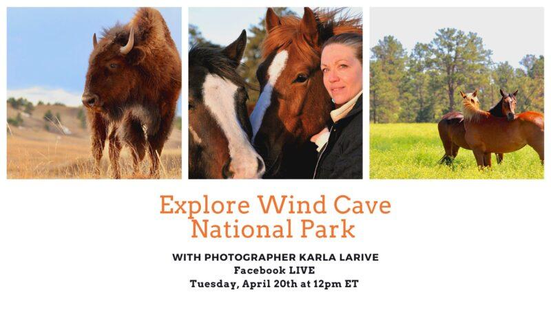 Explore Wind Cave National Park FB LIVE